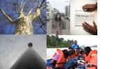 Mosaïque des 5 photos des classes lauréates