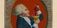 Détail : Maximilien Robespierre… estampe de Canu, 1796, version coloriée